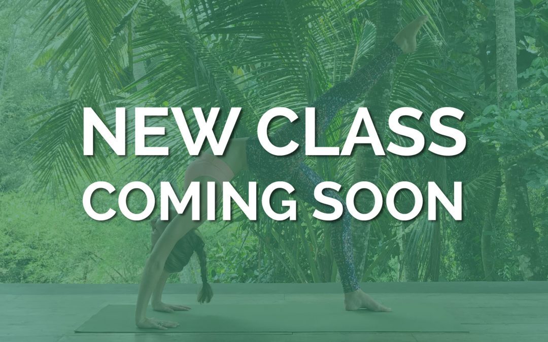 New class coming soon!